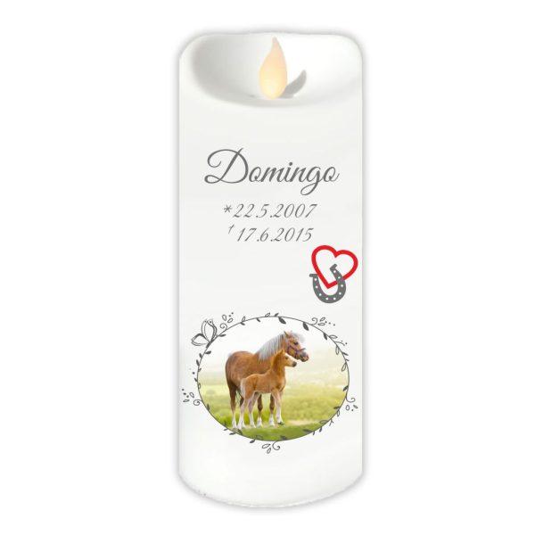LED Kerze Twinkle für Tiere mit Foto im Schmetterlingrahmen und Hufeisen