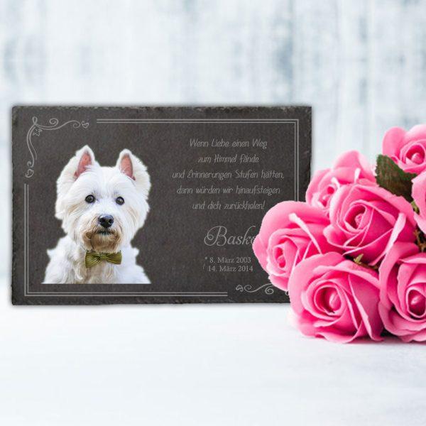 Gedenktafel fürs Tier mit Foto