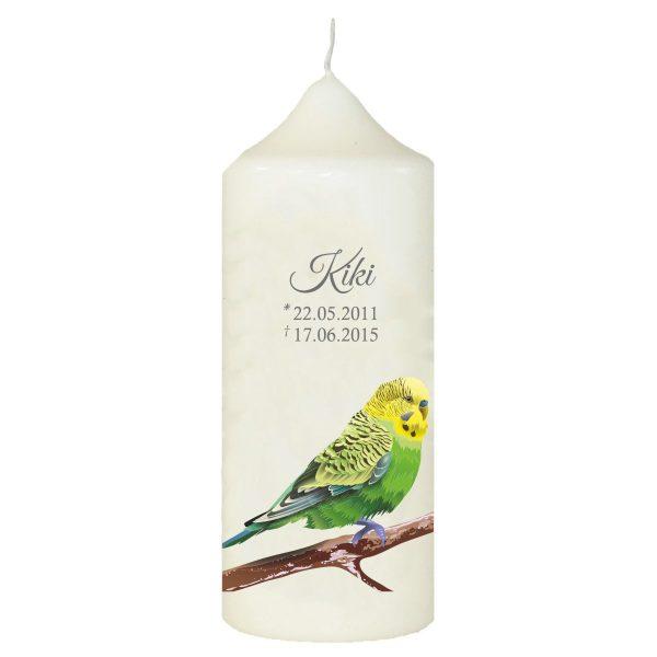 Wachskerze für Tiere Grüner Vogel