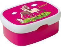 Rosti Mepal Snack-Box Campus mini